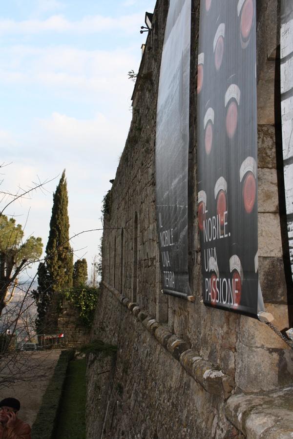ingresso anteprima montepulciano