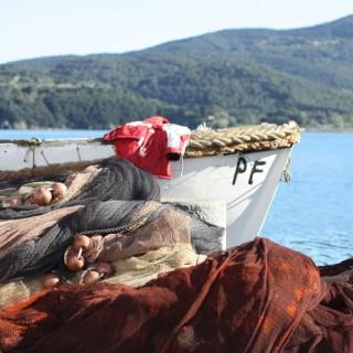 L'Aleatico dell'isola d'Elba, la sua festa a Portoferraio ed il primo weekend di primavera