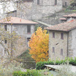 Der Herbst in der Toskana. Das Kastanienfest in der Garfagnana