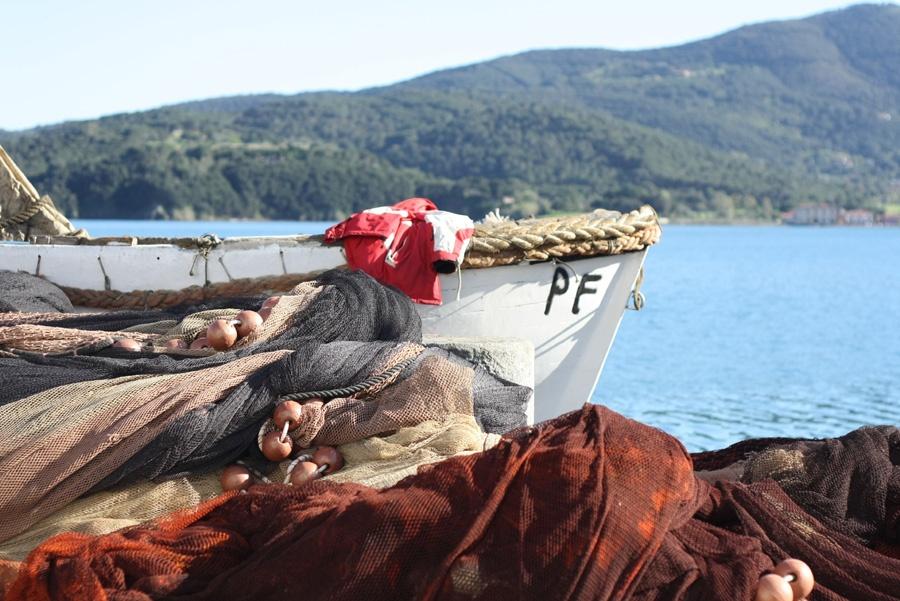 Aleatico dell'isola d'Elba a Portoferraio