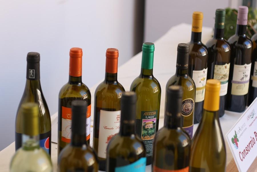 vini bianchi elbani
