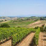 strada del vino nobile di montelpuciano