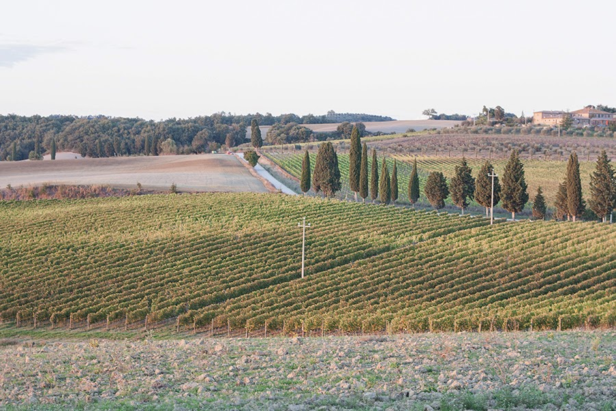 autunno val d'orcia