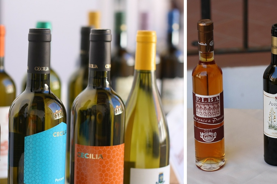 isola elba cosa gustare: vini elbani