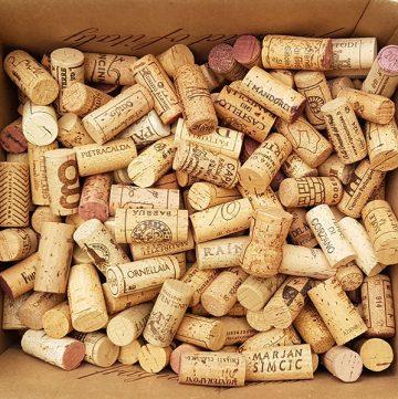 articoli sul vino fantoni